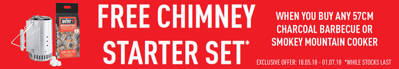 Weber Free Chimney Starter Set