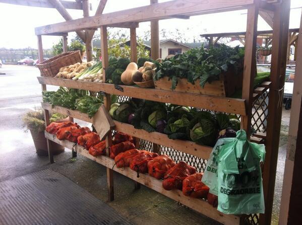 Blofield Farm Shop