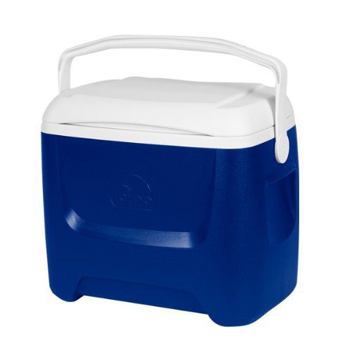 Igloo Island Breeze 28 qt Family cool box 44558