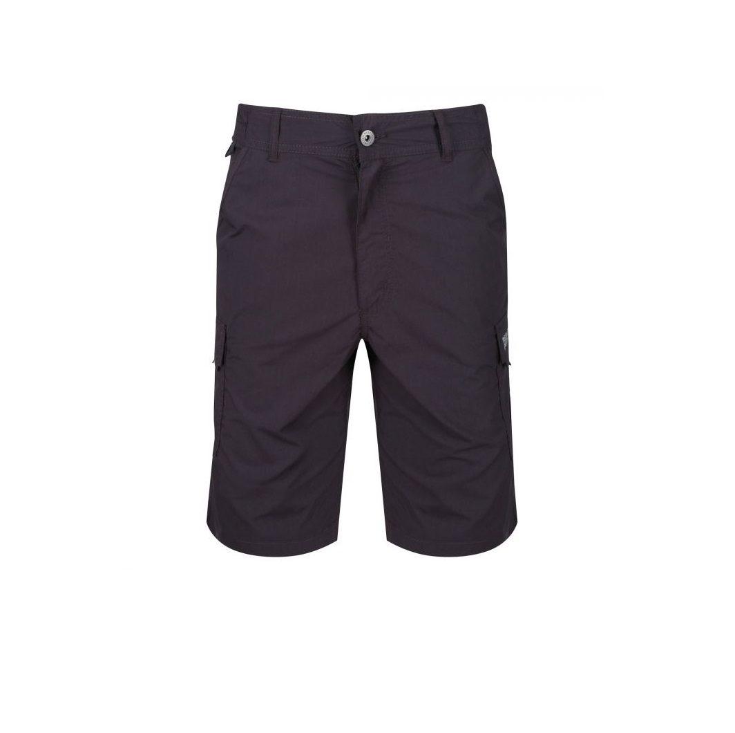 a0559ac2be Regatta Delph Cargo Shorts - Iron