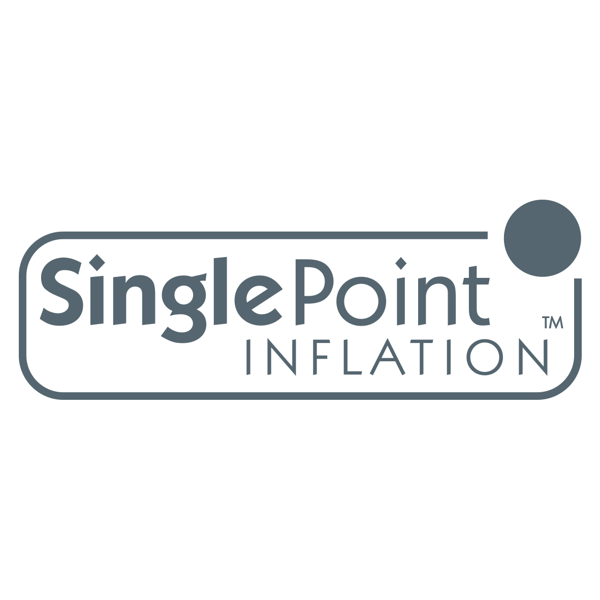 Single Point Inflation Logo Charcoal