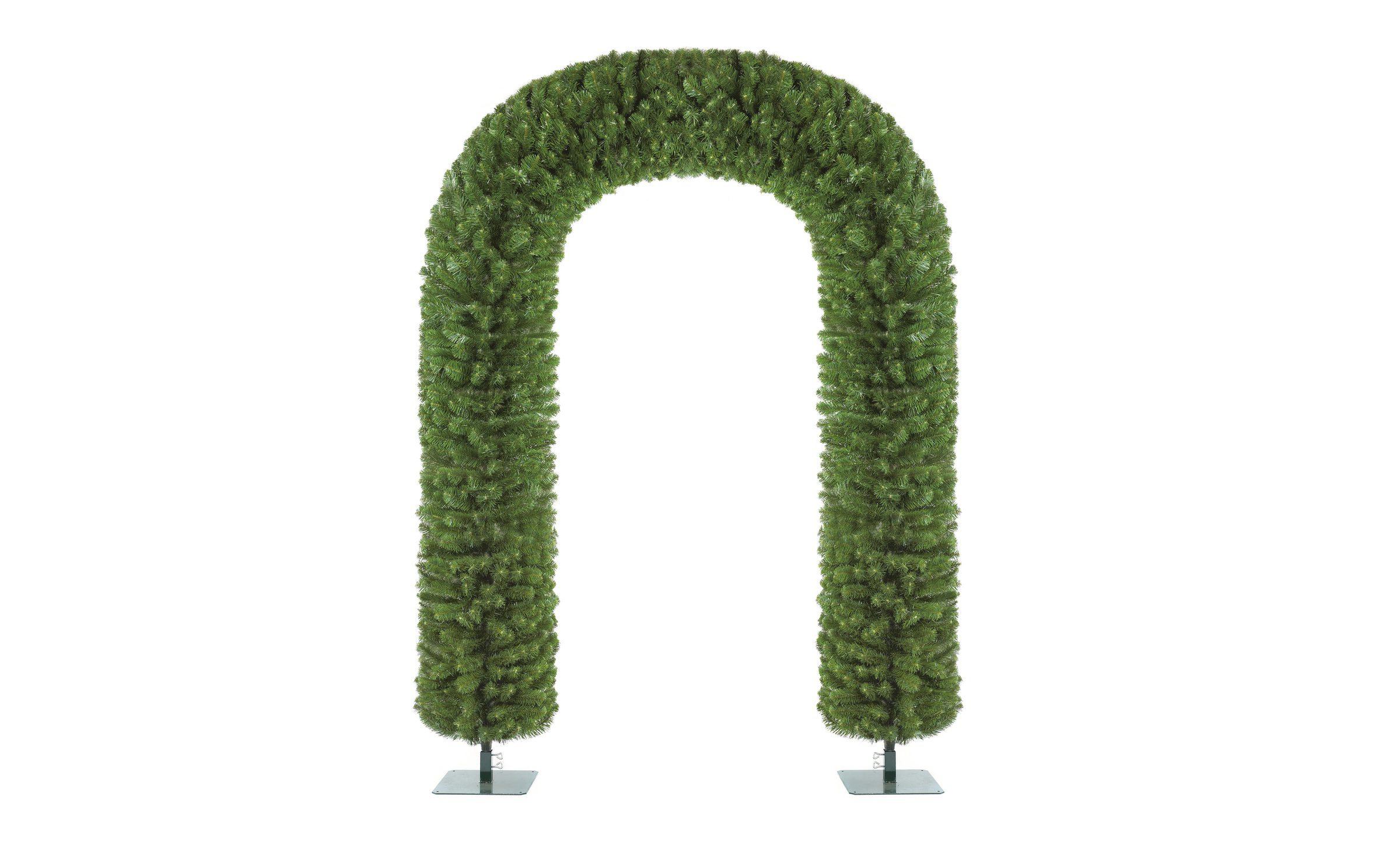 2 4 Tree Arch